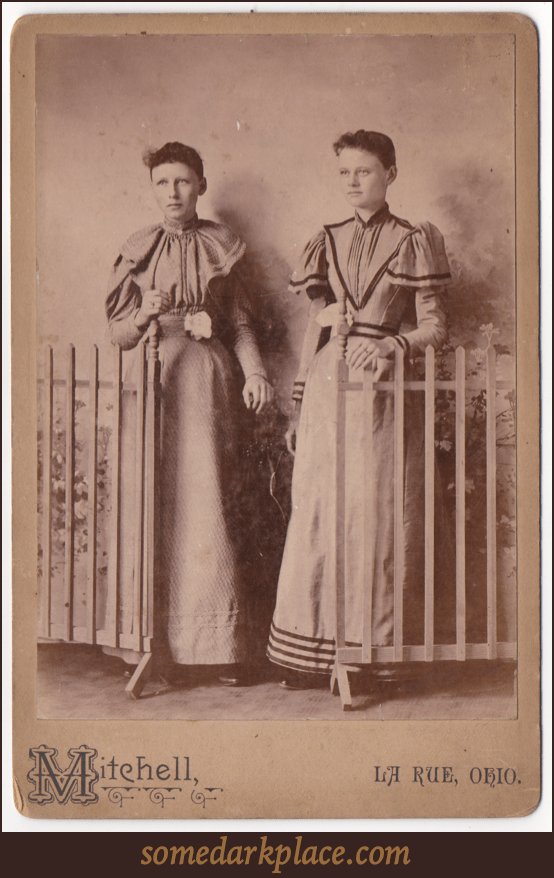 Two young women. One in partial profile. One looking ahead. Both are wearing similar full length dresses. Their hair is either short or pulled back. They stand at a gate in front of a painted background.